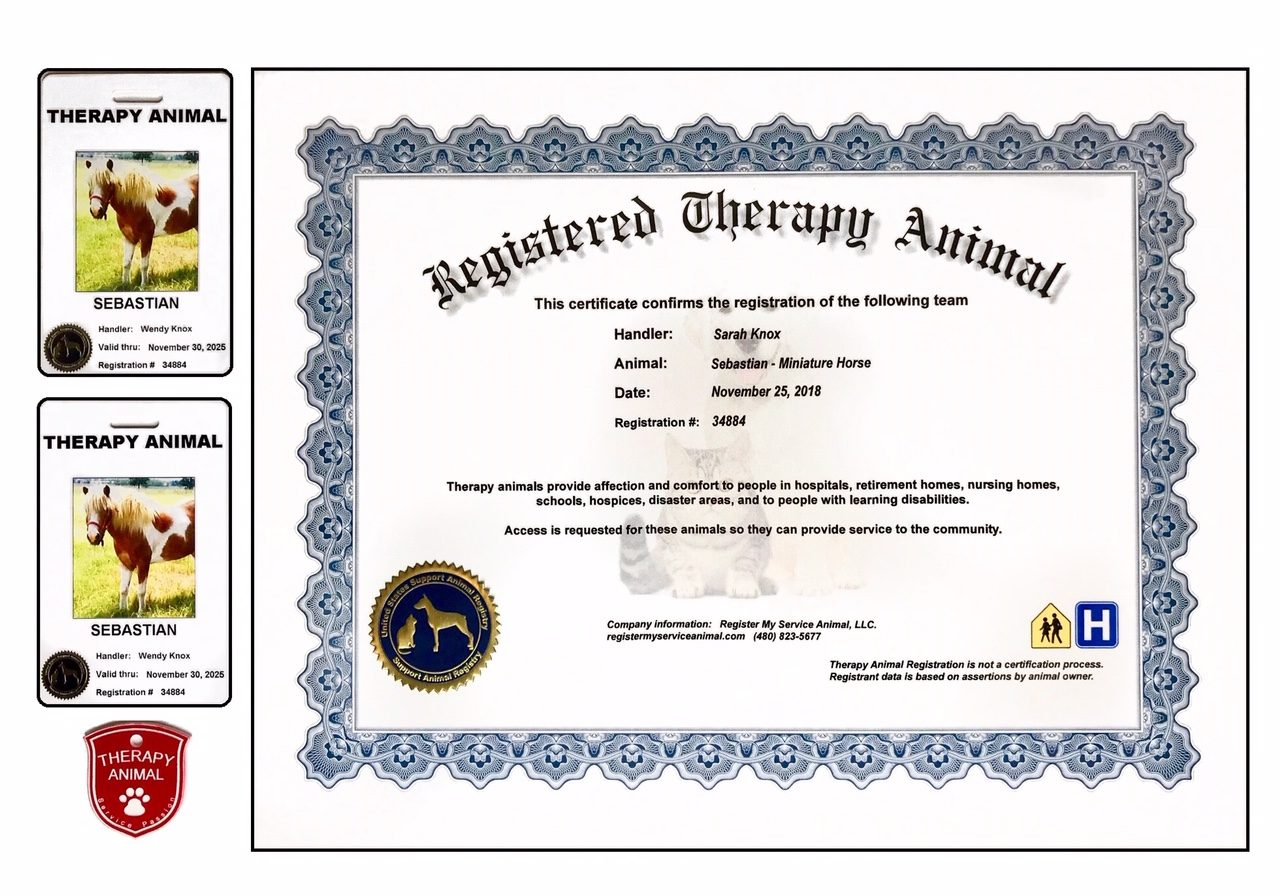 CERTIFICATE THERAPY